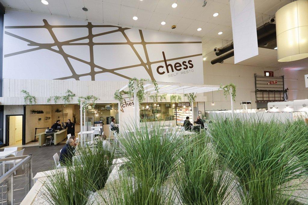 Chess-47141.jpg