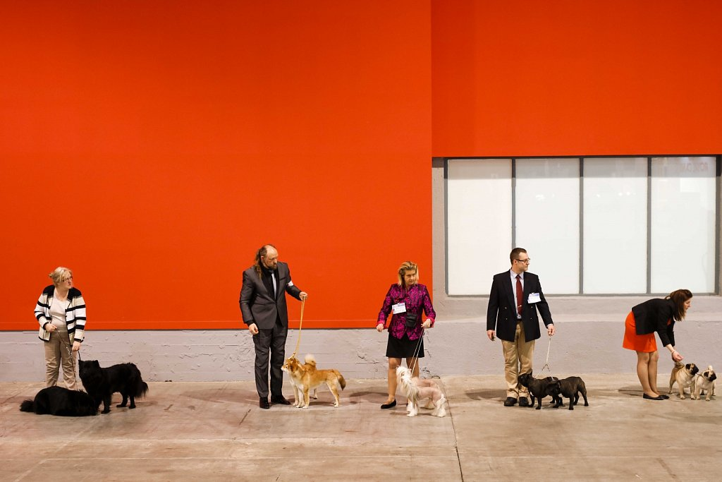 European Dog Show 2015