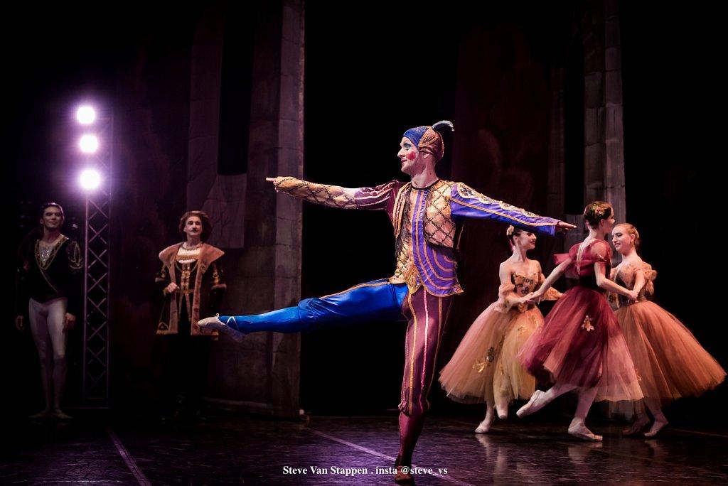 Moscow-City-Ballet-9-STEVE-VAN-STAPPEN-copyright-exclusive-rightjpgjpg.jpg